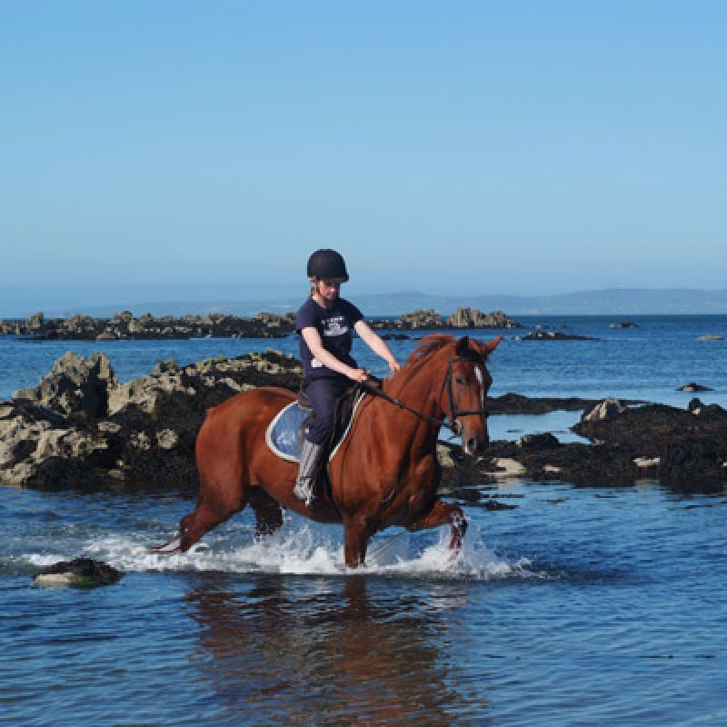 Horse Riding on the Dingle Peninsula